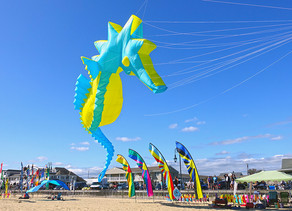 CANCELED: Family Fun at the Belmar Kite Festival