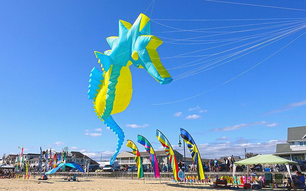 Belmar NJ Kite Festival