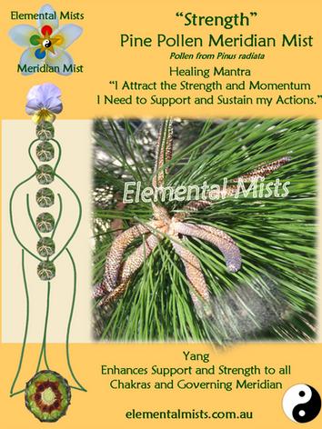 Strength - Pine Pollen