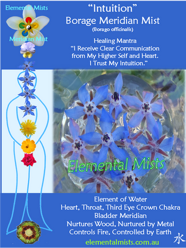 Intuition - Borage
