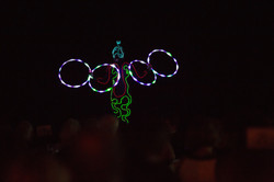 glowshows.jpg