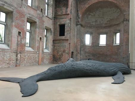 Der Buckelwal und ich - Ein Ausstellungsbesuch für Entspannung und Belebung