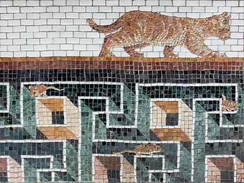 oblivious cat, mosaic, bachor