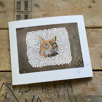 """""""Street Cat"""" signed/numbered limited edition (of 30) print"""