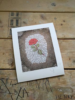 Rose signed print