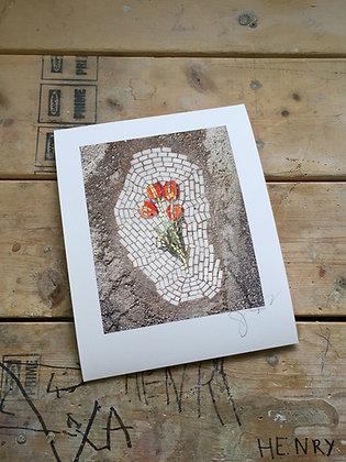 Tulip signed print
