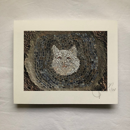 """""""Street Cat 3"""" signed/numbered limited edition (of 30) print"""