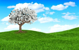 3D money growing on a tree on beautiful landscape