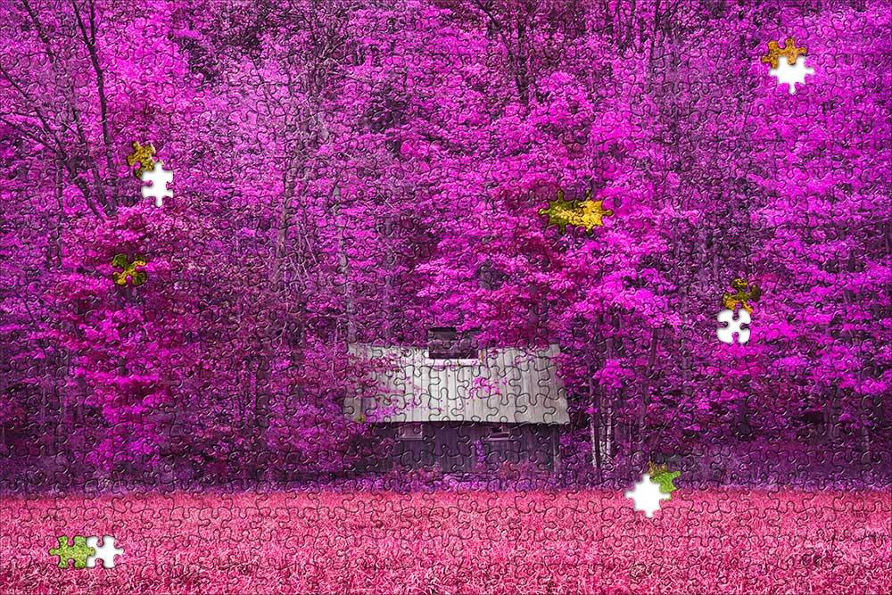 Pink-puzzle.jpg