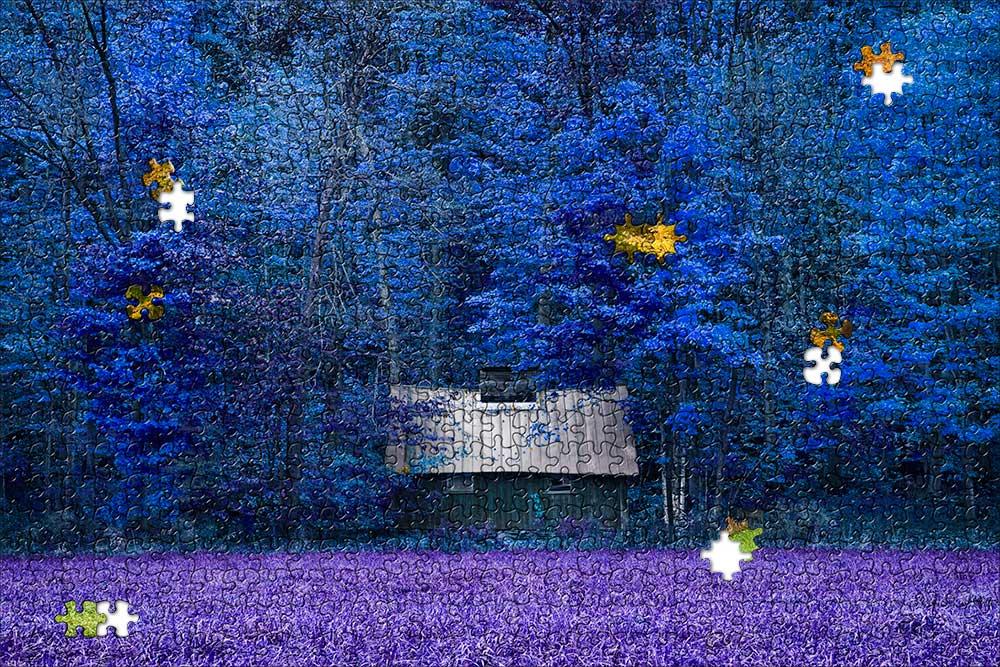 Purple-puzzle.jpg