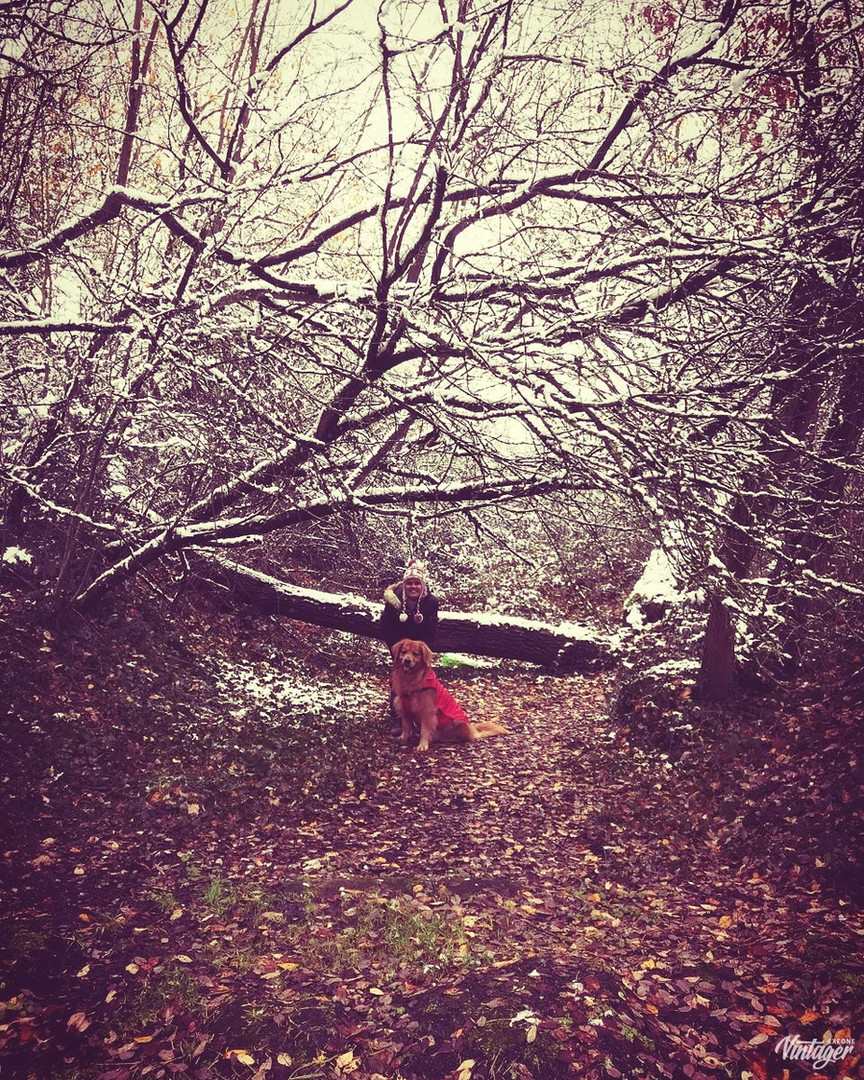 Me and Ginger on a forest walk in the snow