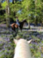 PHOTO-2020-05-18-00-57-54_edited_edited.
