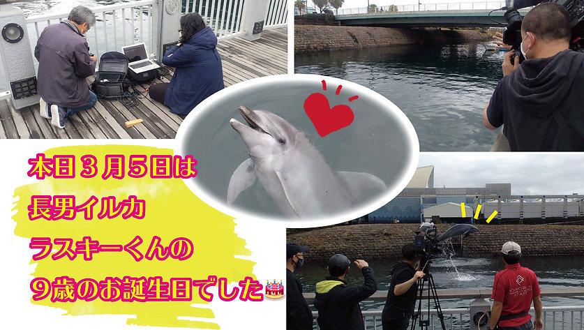 filming4.jpg