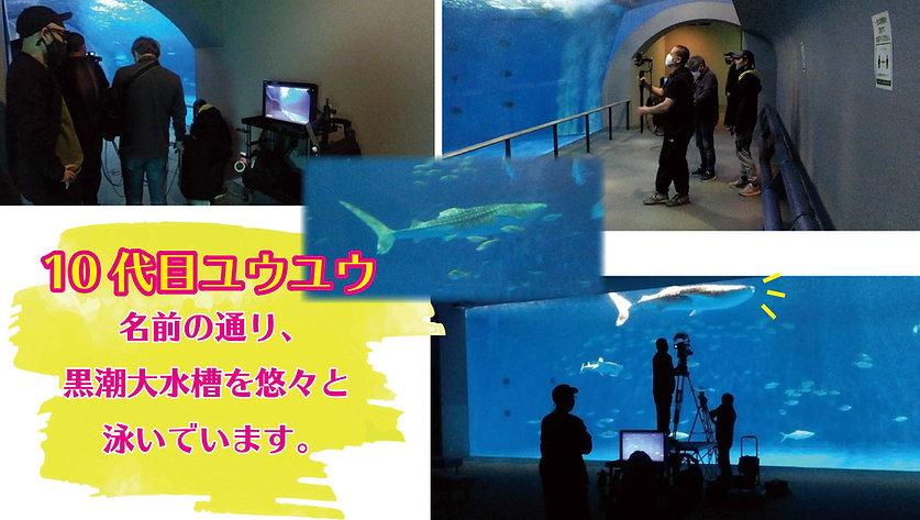 filming2.jpg