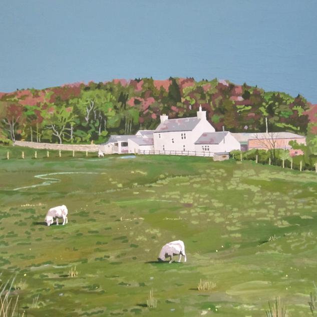 'Farm On Hillside (by Gelston)'