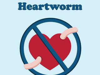 Heartworm Test/Microchip Event
