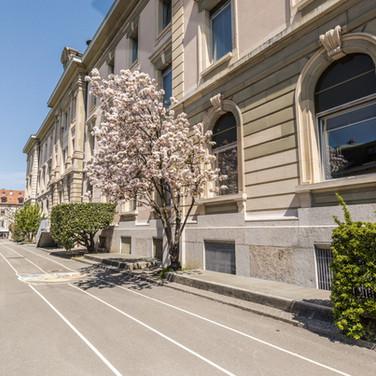 neighbourhood school carouge geneva