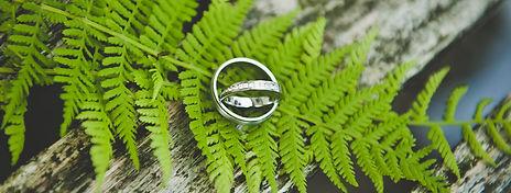 Hochzeitsfotograf Dresden Preis, Kosten, Svatební fotograf cena, Wedding photographer price - Information & Tips