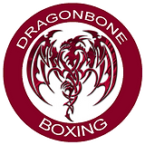 dragonbone logo with white stroke final
