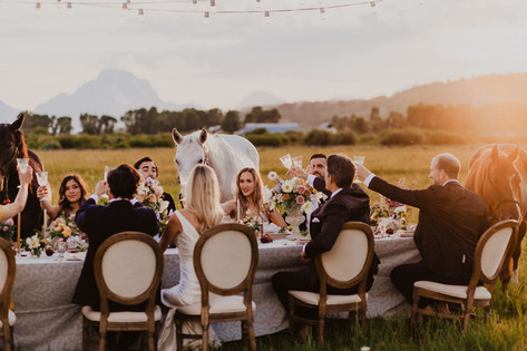 Young Men and Women in Wedding Attire Cheers at a Table in a Field with Horses