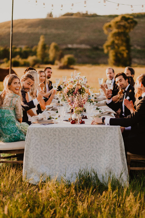 Young Men and Women Smiling and Dressed up at a Long Table in a Field