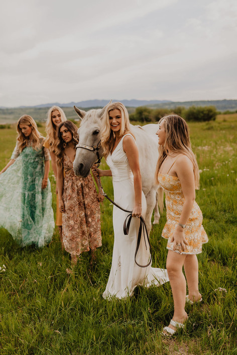 Bride Standing with Bridesmaids in a Field with a White Horse