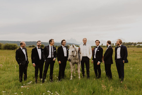 Groom and Groomsmen standing in a field with White Horse