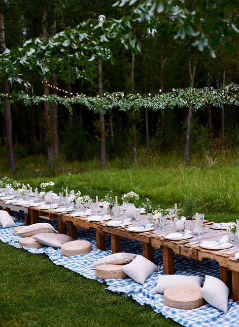 Long Table on a Blue Blanket in a Field with Hanging Greenery