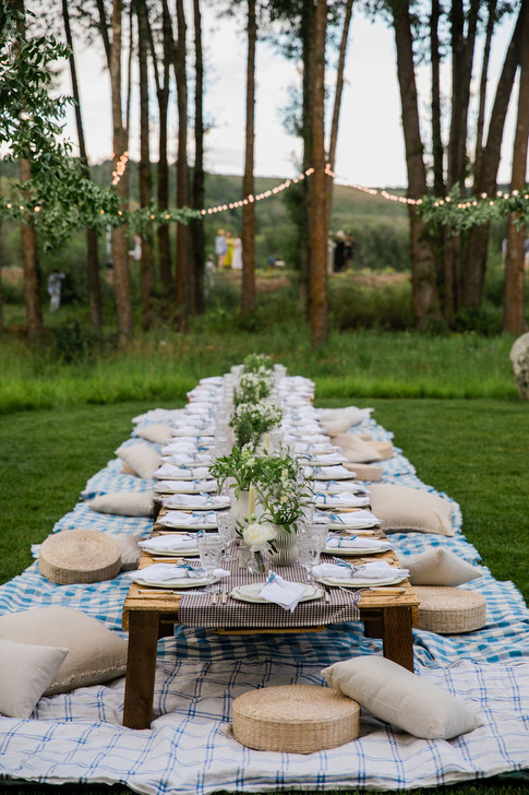 Long Low Wooden Table on a Blue Blanket in a Field