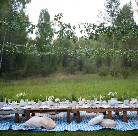 Long Low Tabel in a Field with Lights and Greenery Above it