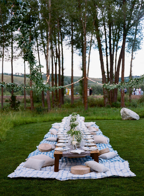 Low Low Table with Sting Lights and Greenery Above it in a Field with Trees in the background