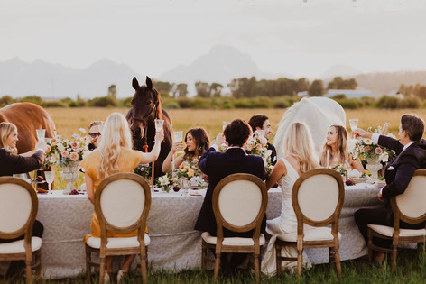 Young Men and Women Cheers at a Table with Three Horses