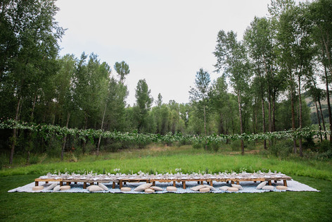 Long Low Wooden Table on a Blue Blanket in a Field