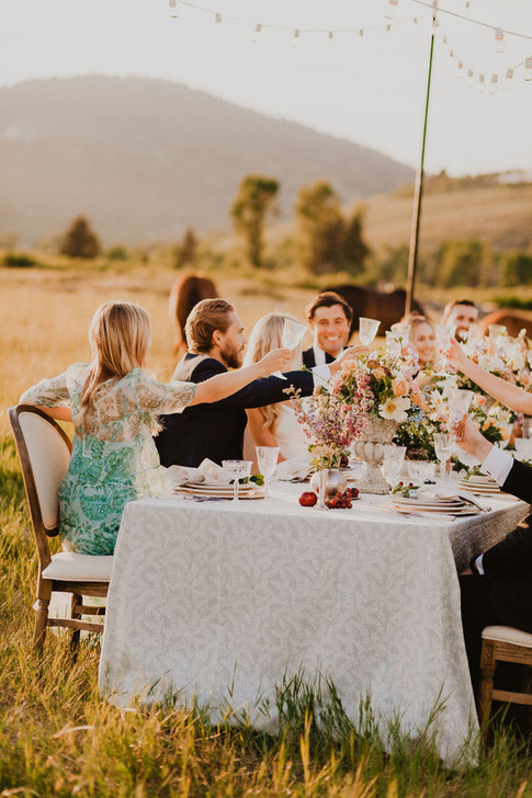 Young Men and Women Cheers at a Table in a Field