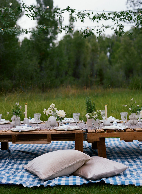 Two Cream Pillows on a Blue Checkered Blanket at a Low Table in a Field