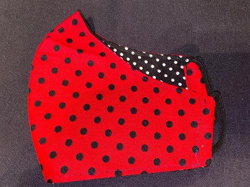 Black and Red LadyBug