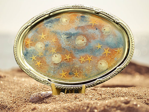 Sand dollar Star fish Beach Design Tray