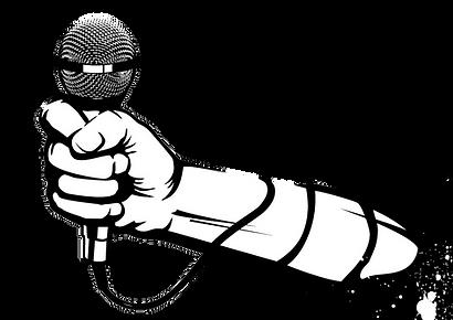 mic arm