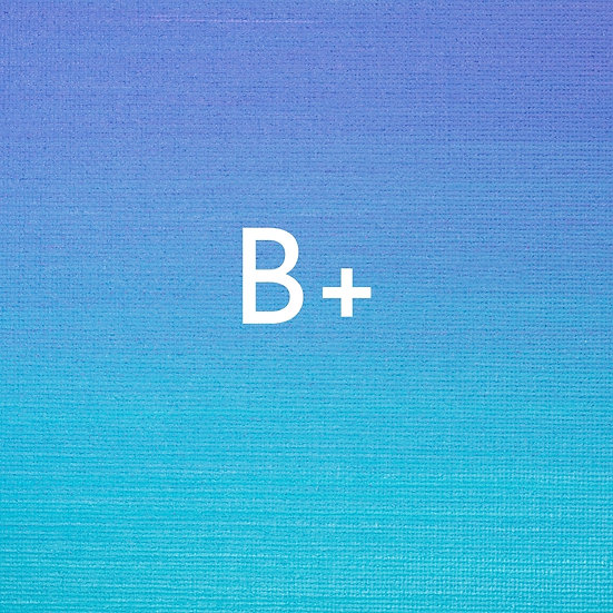 B+ ORGANIC DRIED MUSHROOMS 1/2oz
