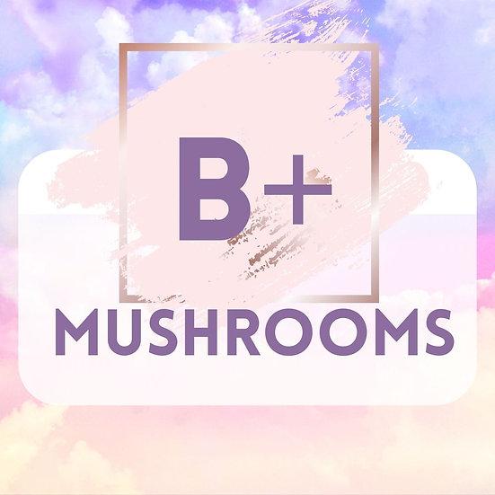 B+ 1 OZ ORGANIC DRIED MUSHROOMS