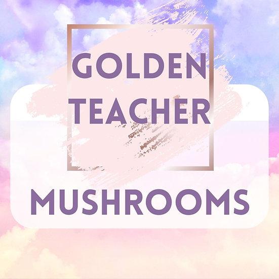 GOLDEN TEACHER 1 OZ ORGANIC DRIED MUSHROOMS
