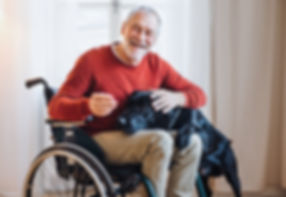 Disabled individual in a wheelchair with dog companion