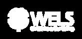 cs-logoreversewebminimum.png