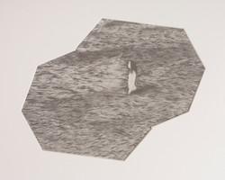 Untitled, Screen print on paper, 48 x 53 cm, 2016