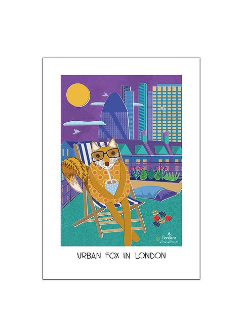 Urban Fox in London