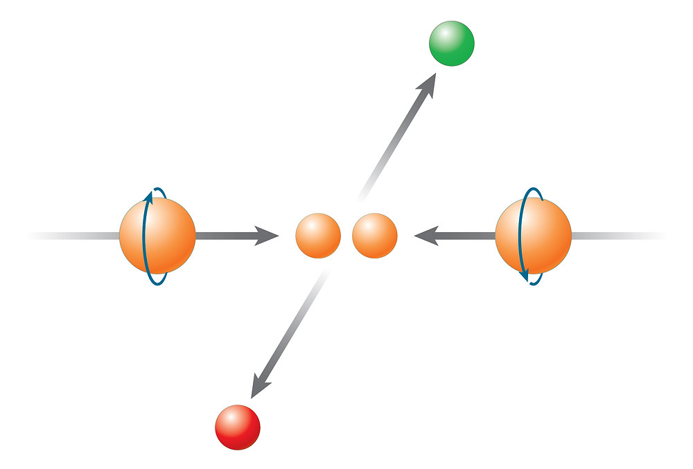 """RHIC is the only machine in the world that can collide protons with their spins aligned in a particular direction. Measuring differences in the particles produced when the spins in the two beams are pointing at one another (as shown) vs. when they are pointing in the same direction, colliding """"head"""" to """"tail,"""" can help scientists tease out the contribution made by gluons."""