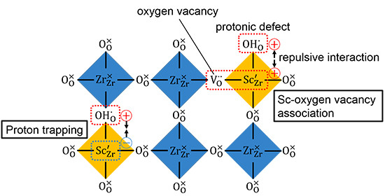 (Fig. 1) Schematic view of the distribution of protons and oxygen vacancies in perovskite-type proton conductors