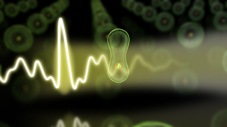 Optical attosecond flashes capture the motion of sluggish electrons. Credit: Graphic Christian Hackenberger