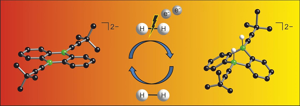 Chemists at Goethe University have now developed a new catalyst for the activation of hydrogen by introducing boron atoms into a common organic molecule. CREDIT GU