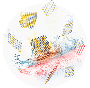 A new ORNL study published in Angewandte Chemie International Edition describes a new gas exfoliation process that yields a 20 percent increase in surface area per nanosheet of boron nitride. (Image credit: Angewandte Chemie International Edition.